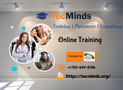 Online Training Institute in USA I TecMinds