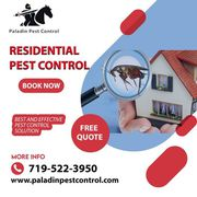 Top Rated Pest Control Company in Colorado Springs